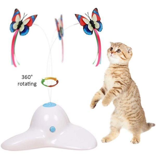 Cat Toys Funny